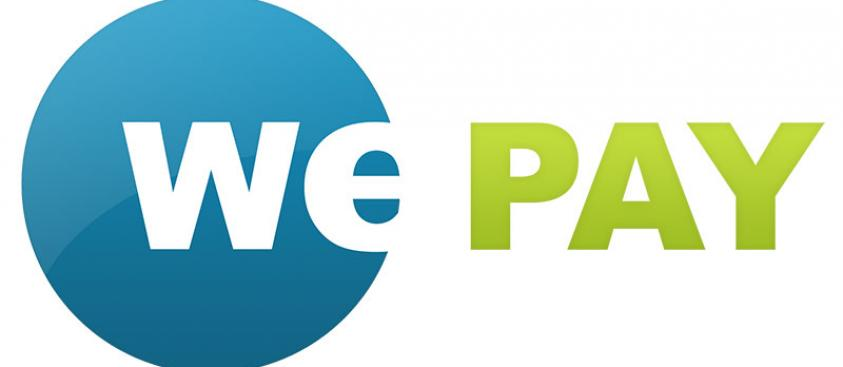WePay Business Plan
